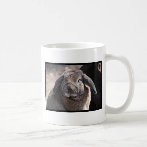 Lop Eared Rabbit Mug
