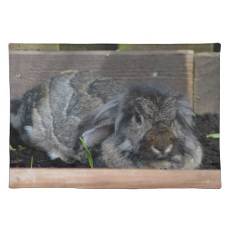 Lop eared rabbit placemat