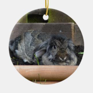 Lop eared rabbit round ceramic decoration