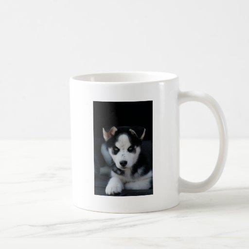 Lop Eared Siberian Husky Sled Dog Puppy Mug