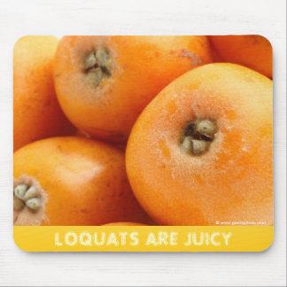 Loquats Mouse Pad