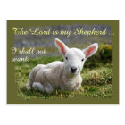 Lord is my Shepherd Little White Lamb Blank Postcard