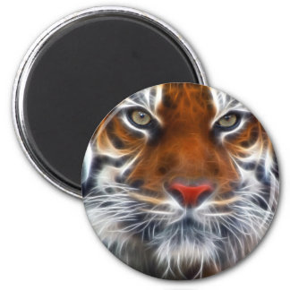 Lord of the Indian Jungles, The Royal Bengal Tiger Magnet