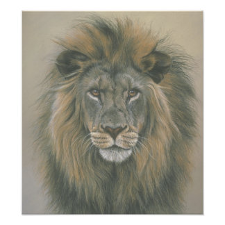 Lord of the Jungle Lion Poster Photographic Print