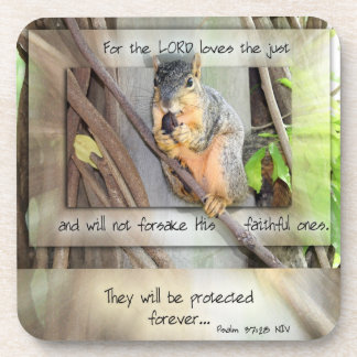 Lord Protects the Faithful Coasters with Squirrel
