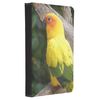 Lorikeet Kindle Touch Cover