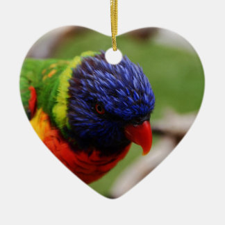 Lorikeet Ceramic Heart Decoration