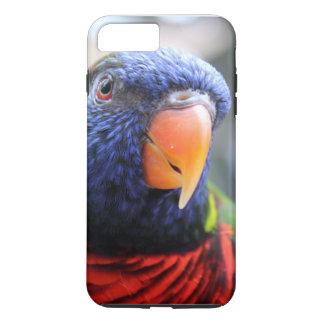 Lorikeet iphone case