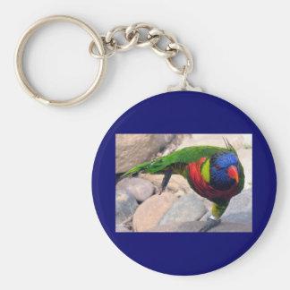 Lorikeet Basic Round Button Key Ring