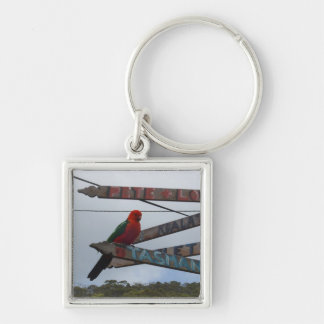 Lorikeet Silver-Colored Square Key Ring