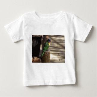 Lorikeet T-shirts