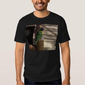 Lorikeet Tee Shirt