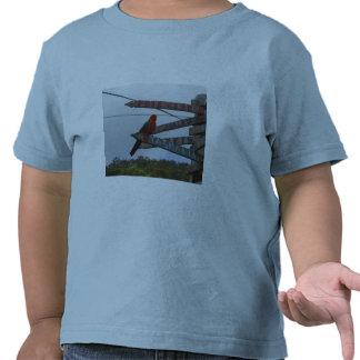 Lorikeet Tshirts