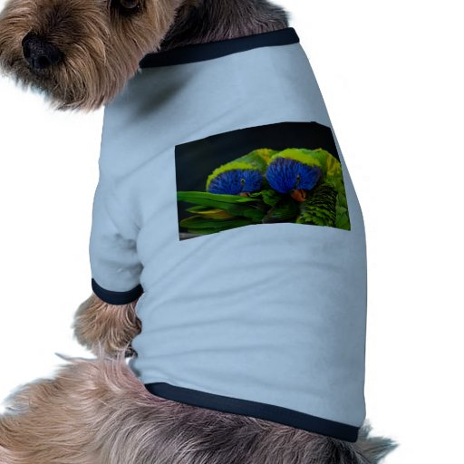 Lorikeets Pet Tee Shirt
