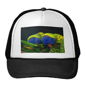 Lorikeets Trucker Hat