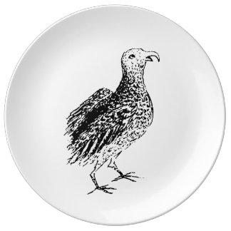 Lory Plate
