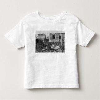Los Angeles, CA Perishing Square and Biltmore Tee Shirts
