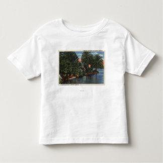 Los Angeles, CaliforniaA Beautiful Park Scene Shirts
