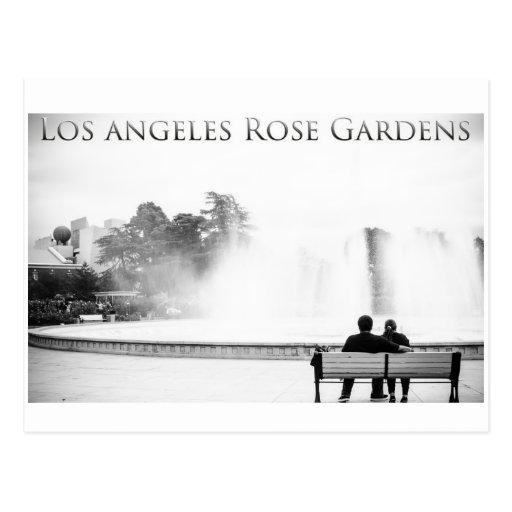 Los Angeles Rose Gardens Postcard