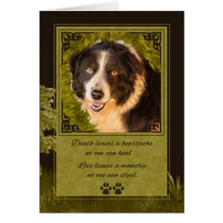 Loss of a Dog Border Collie Pet Sympathy Card
