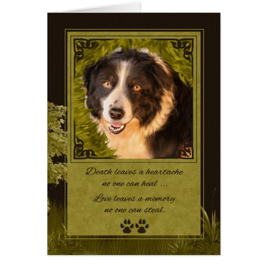 Loss of a Dog Border Collie Pet Sympathy