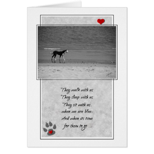 Loss of a Dog Pet Sympathy Beach Theme