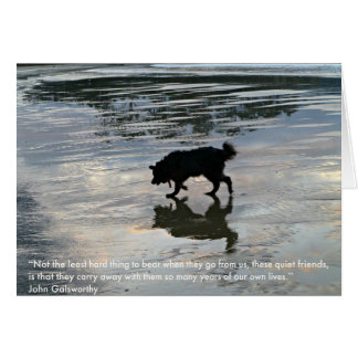 Loss of pet card, dog sympathy card