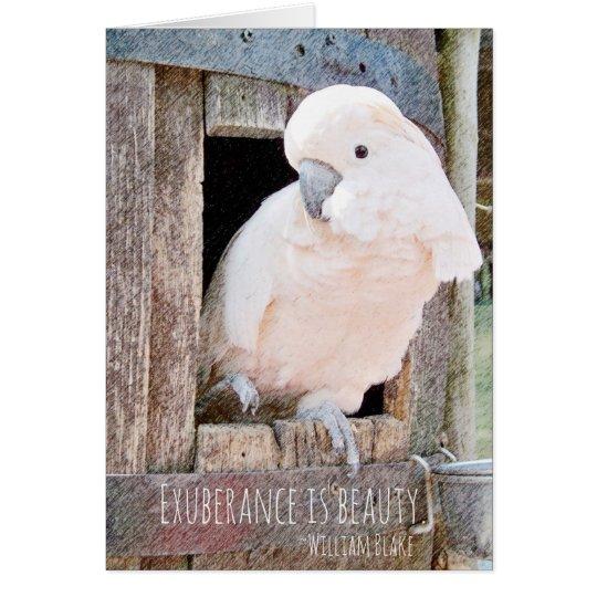 Loss of Pet Cockatoo Blake Quote Custom Sympathy