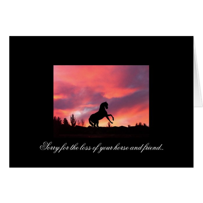 Loss of your horse - Sympathy Greeting Card