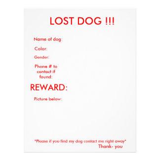 LOST DOG!!! 21.5 CM X 28 CM FLYER