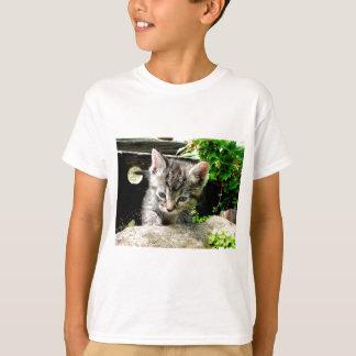 Lost Kitten Shirts