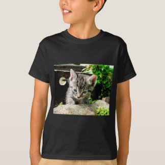 Lost Kitten Tshirts