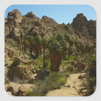 Lost Palms Oasis II at Joshua Tree National Park Square Sticker