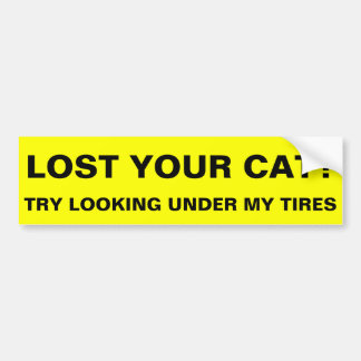 Lost your cat? bumper sticker