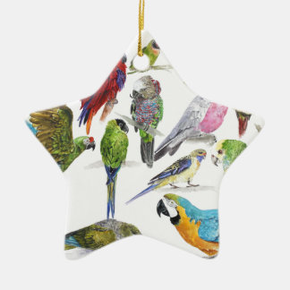 Lots and lots of Parrots on lots and lots of gifts Ceramic Star Decoration