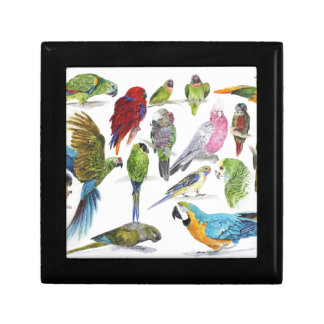 Lots and lots of Parrots on lots and lots of gifts Gift Box