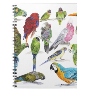 Lots and lots of Parrots on lots and lots of gifts Note Book