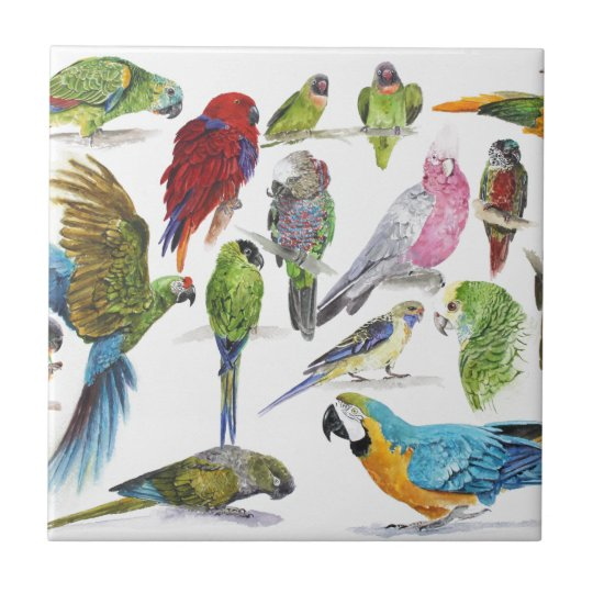 Lots and lots of Parrots on lots and lots of gifts Small Square Tile