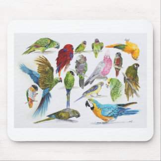 Lots of different Parrots of gifts especially for Mouse Mat