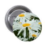 Lotsa Daisies Pinback Buttons