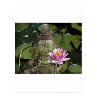 Lotus 1 & Buddha Postcard