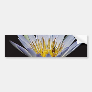 Lotus and bee meaning bumper stickers