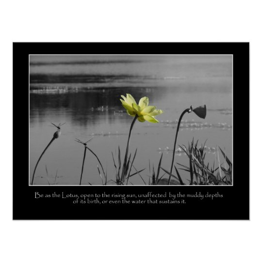 Lotus and Dragonflies Motivational Poster