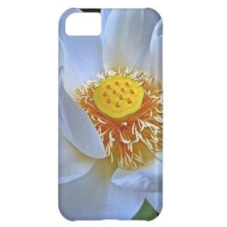 Lotus Blossom iPhone 5C Cases