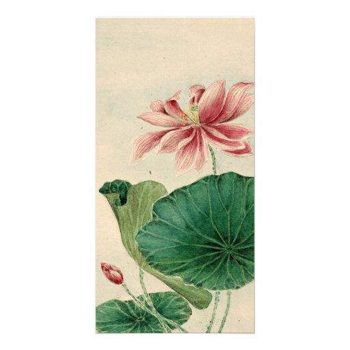 Lotus blossom Photo Card
