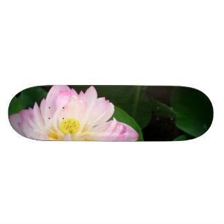 Lotus Blossom Skateboard Deck
