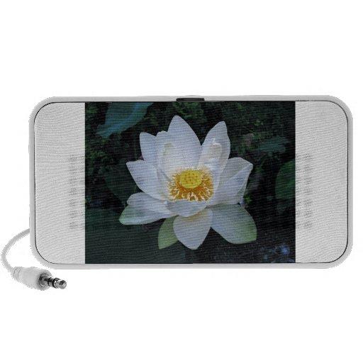 Lotus Blossom Mini Speaker