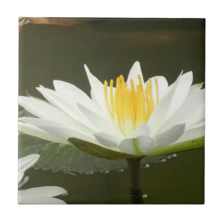 Lotus Blossom Tile