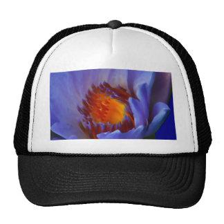 LOTUS BLUE CAP