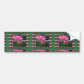 LOTUS : Chakra Rose Pink Green Garden Bumper Sticker